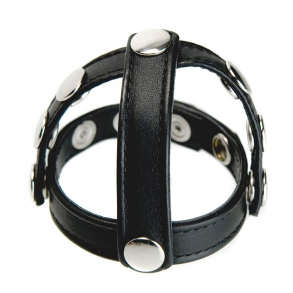cock and ball harness