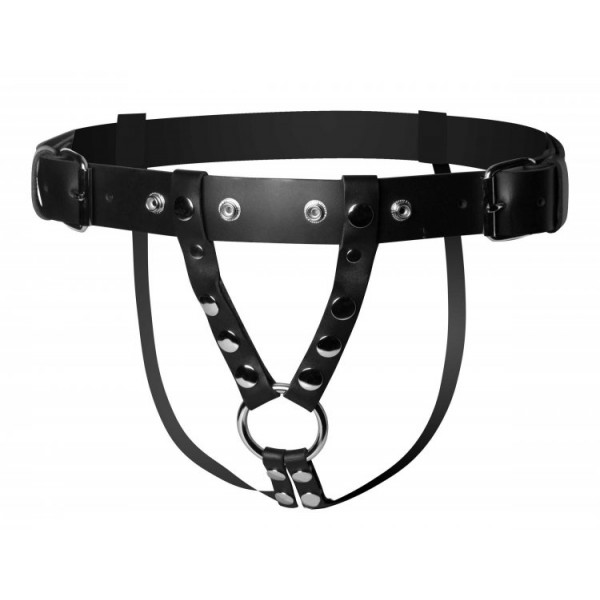 Double penetration leather harness