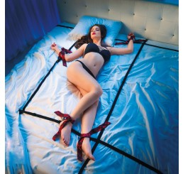 8 Points of Love Bed Restraint Set