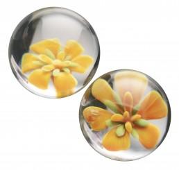 Asvani Glass Ben Wa Balls